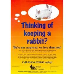 British Rabbit Council