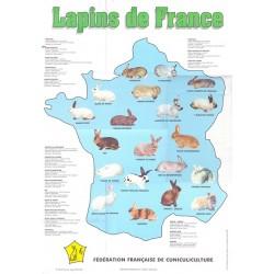 Lapins de France