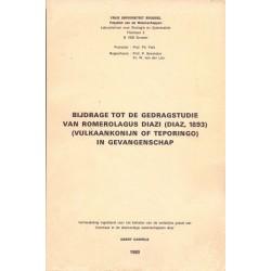 Bijdrage tot de gedragstudie van Romerolagus Diaze (vulkaankonijn of Teporingo) in gevangenschap