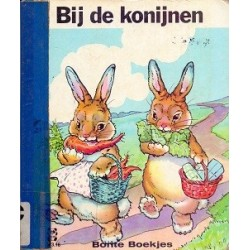 Bij de konijnen