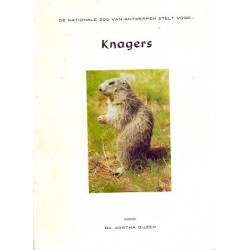 Knagers