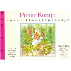 Pieter Konijn ansichtkaartenboek