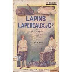 Lapins lapereaux & Cie